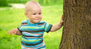 Toddler tree