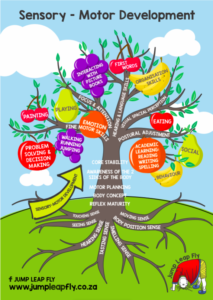 Sensory Motor Tree Diagram
